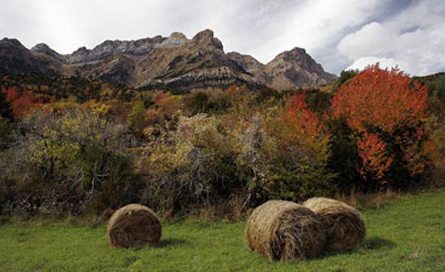 piedrafita de jaca senderos comarca alto gallego