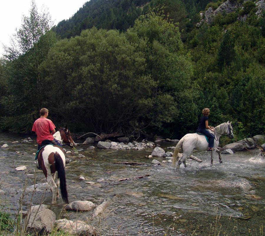 hipica en la comarca del alto gallego